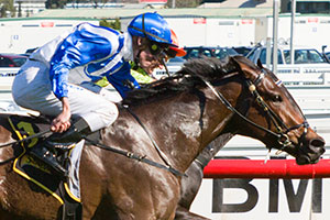 Lady Of Harrods Takes Out Thousand Guineas Prelude At Caulfield