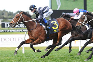 Stout Hearted receives 1kg penalty for Caulfield Cup