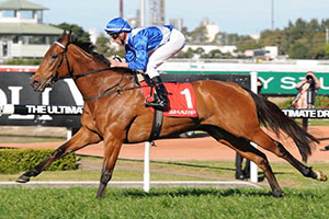Pierro and More Joyous still on top of Cox Plate betting