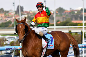Happy Trails to push onto Cox Plate
