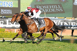Epaulette takes out Golden Rose, now for Pierro