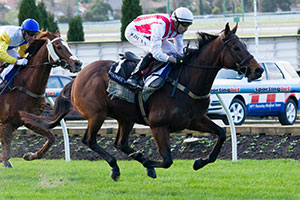 Rekindled Interest to get back on track at Moonee Valley