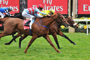 Red Cadeaux not in Caulfield Cup first acceptances