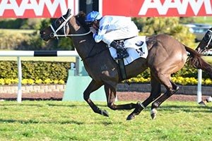Said Com's Epsom berth on the line in Tramway