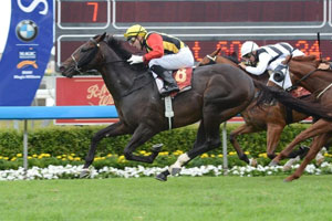 Spirit Of Boom Out To Emulate Brother's Success