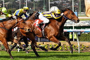 A perfect Manikato Stakes preparation for Bel Sprinter