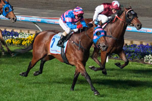 Cassidy to ride Sea Siren in Hong Kong