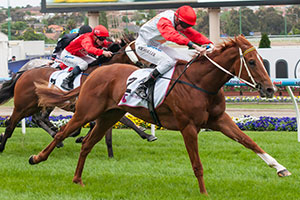 Hidden Warrior Leads All The Way in Telstra PhoneWords Stakes