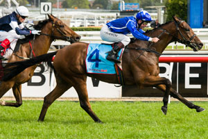 Shahwardi looking for Melbourne Cup penalty after Herbert Power win