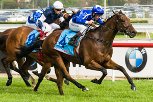 Impressive win earns Shahwardi 1.5kg penalty for Melbourne Cup