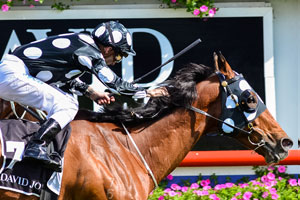 Solzhenitsyn takes out Toorak Handicap for Queensland