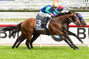 All Too Hard at his best winning the Caulfield Guineas