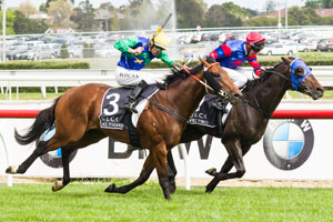 Australian Guineas Attracts 76 Nominations