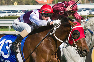 Ocean Park looking for third Group 1 win in Caulfield Stakes