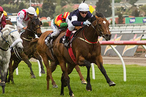 Green Moon Too Good as Team Williams Quinella Turnbull