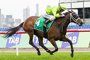 Adelaide Fillies Have Strong Thousand Guineas Presence