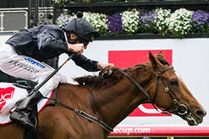 Philippi Presses Derby Claims With UCI Stakes Win