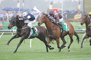 Mourayan heading back to Melbourne after Craven Plate win