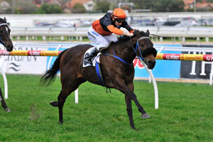 December Draw ready to defend Turnbull Stakes title