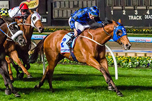 Buffering Back on Track Ahead of Schillaci