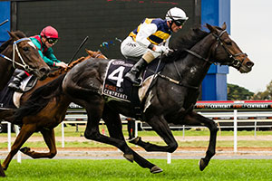 Hong Kong trip on the cards for Gatewood