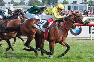 Dunaden Breaks History to Win Caulfield Cup
