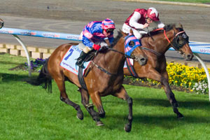 Sea Siren Claims Third Group 1 in Manikato