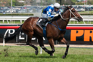 Howmuchdoyouloveme Dominates Caulfield Sprint