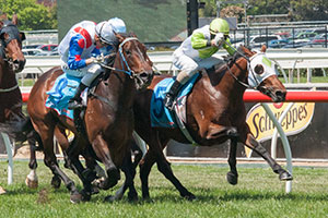 Boss has top Victroia Derby ride