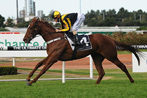 Robl to ride at Eagle Farm on saturday