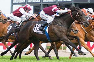 Appearance Wins Myer Classic in Blanket Finish