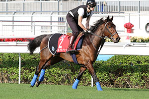 Stoute hopes to send Carlton House out a winner