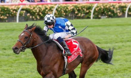2017 Melbourne Cup The Target for Ascot Stakes Winner Thomas Hobson