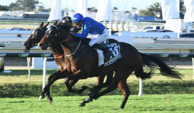 Impending top of 2018 Stradbroke Handicap field, draws barrier 9