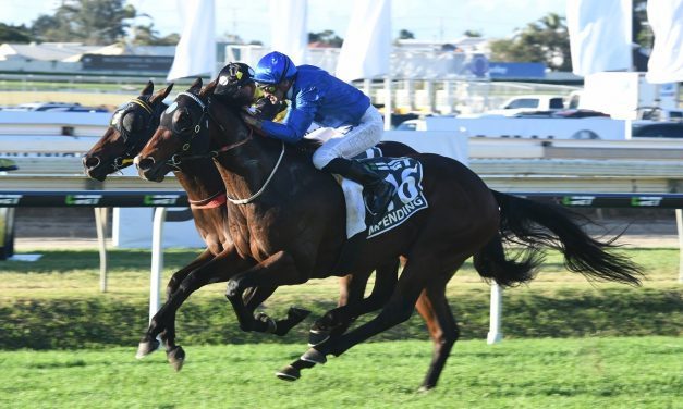Impending ruled out of Winterbottom Stakes