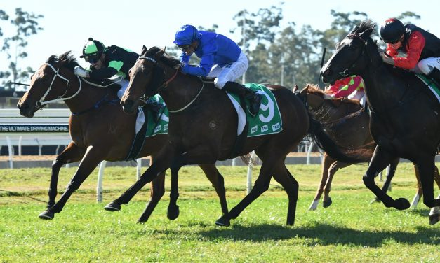 Warwick Farm Racing Preview – Saturday July 8th