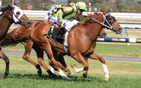 Flamberge Set for Sir John Monash Stakes