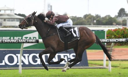 Fancied runners draw wide in 2017 Grafton Cup