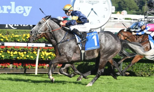 Chautauqua no-go again, no T J Smith Stakes defence