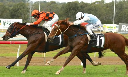 Healthy nominations for Queensland Cup two miler