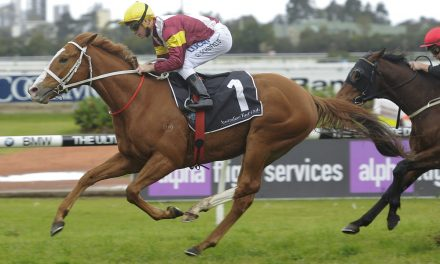 2017 Queensland Cup Day Preview & Tips