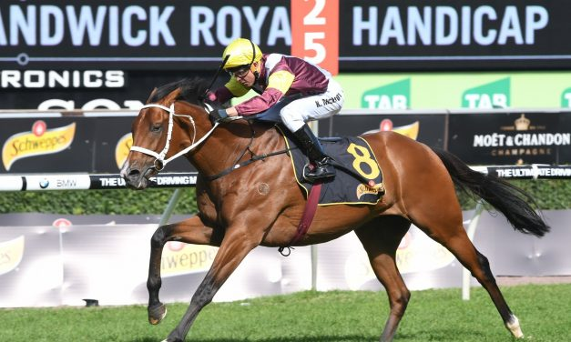 Queensland Cup favourite Richard Of Yorke has good 2 mile form