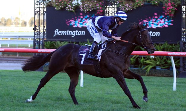 Complete 2017 Sir John Monash Stakes Form Guide