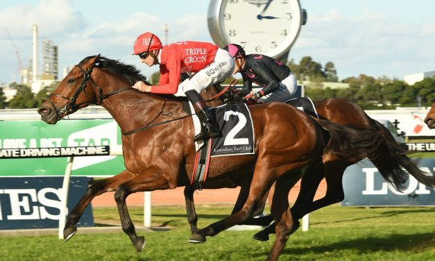Gold Symphony heads up Snowden's 3 Winter Stakes runners
