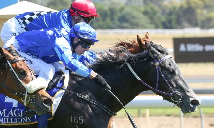 Rain will help Murt The Flirt in Sir John Monash Stakes