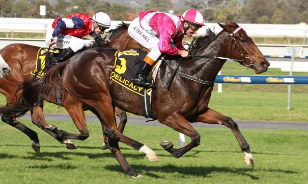 2017 Beaufine Stakes Day Preview & Tips
