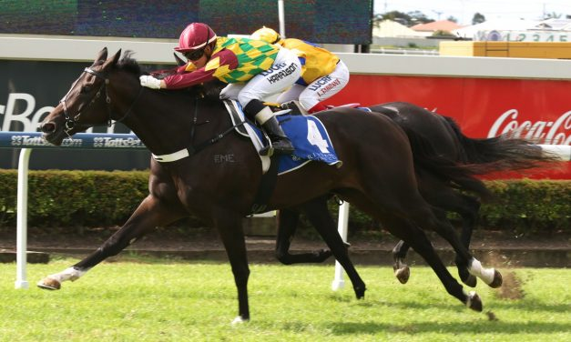 Colour Change to taste first blood at Doomben in Tattersall's Mile