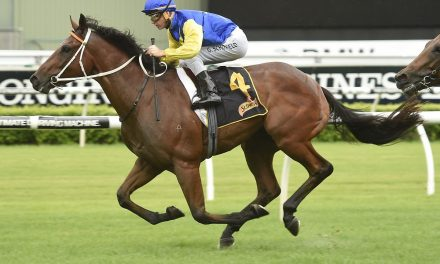 Le Romain on target for Missile Stakes return