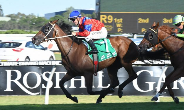 Invincible Gem gears up for Spring Carnival with trial win