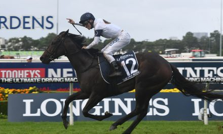 She Will Reign on track for hit and run Moir Stakes mission